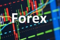 Why Newbies fail in Forex Trading?